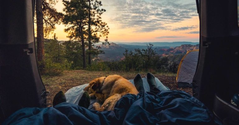 How to Prepare for a Camping Trip